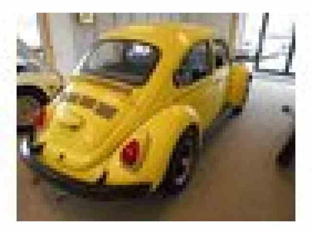 1973 Volkswagen Super Beetle | 1001267