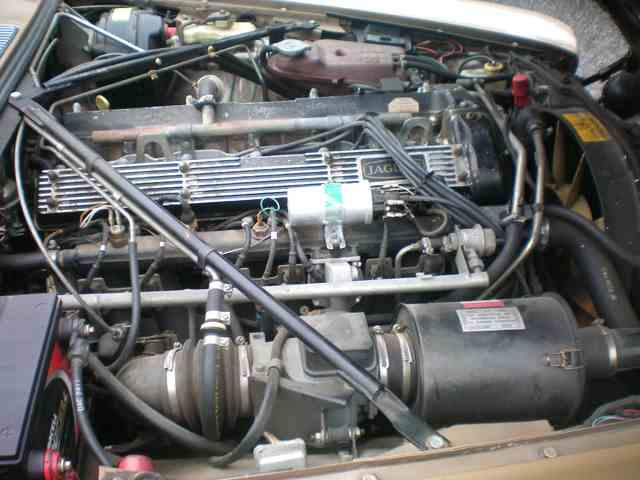 1983 Jaguar XJ6 | 1001989
