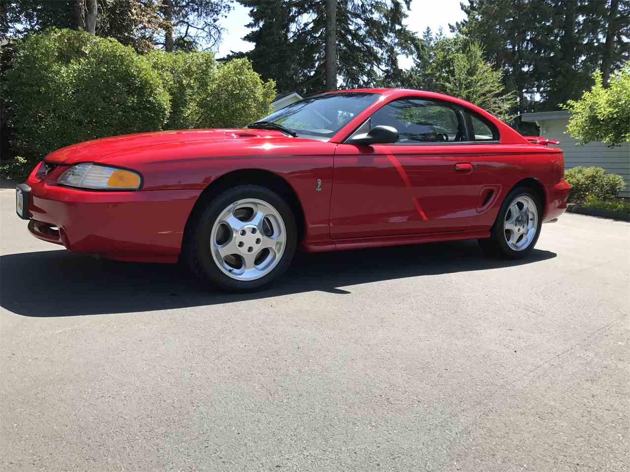 1994 ford mustang cobra for sale cc. Black Bedroom Furniture Sets. Home Design Ideas