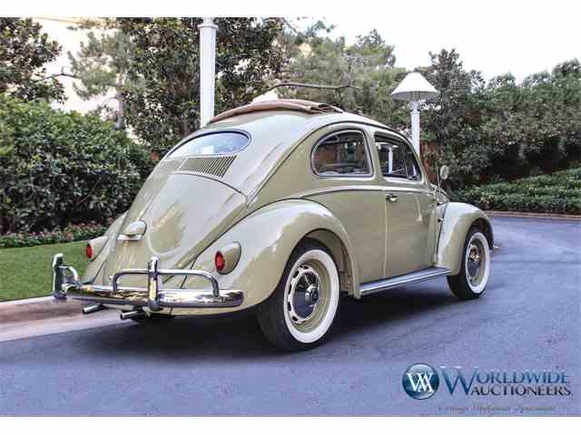 1956 Volkswagen Beetle | 1003041