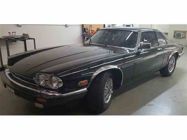 1986 Jaguar XJS | 1003382