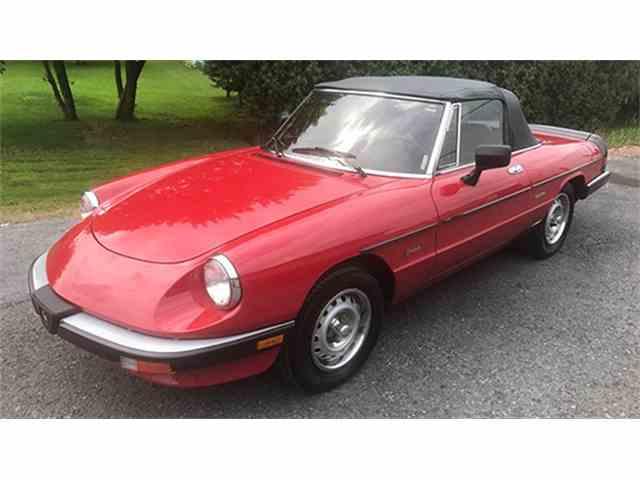 1986 Alfa Romeo Graduate Spider | 1012091