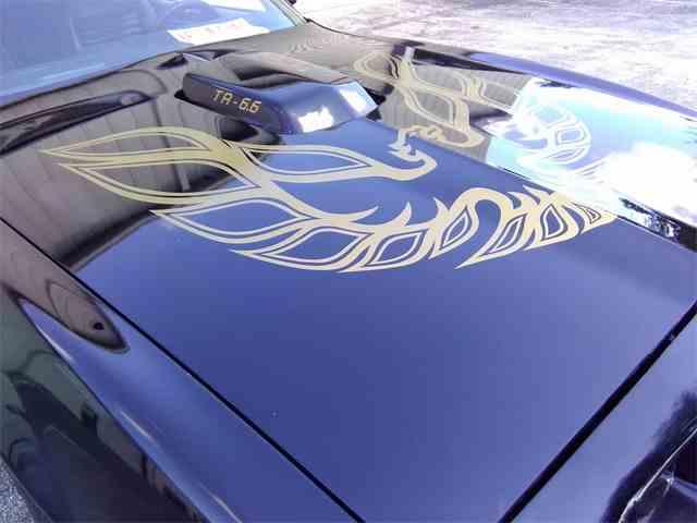 1981 Pontiac Firebird Trans Am | 1013270