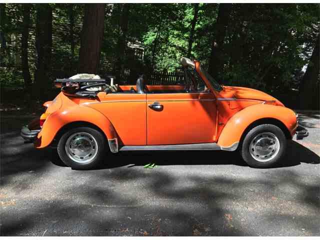 1976 Volkswagen Super Beetle | 1014633