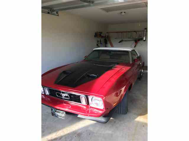 1973 Ford Mustang (Roush) | 1015734