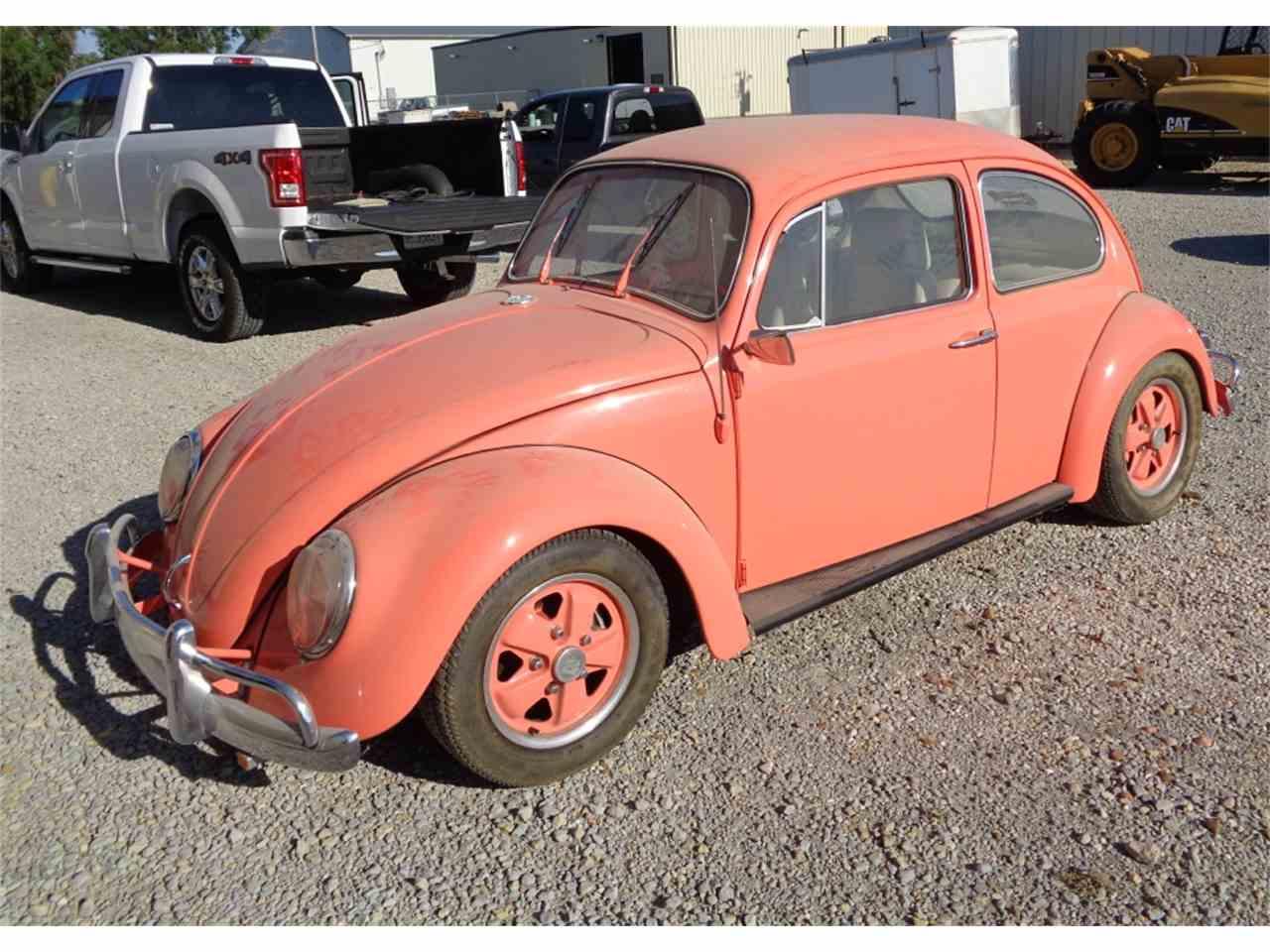 1965 vw bug wallpaper - photo #15
