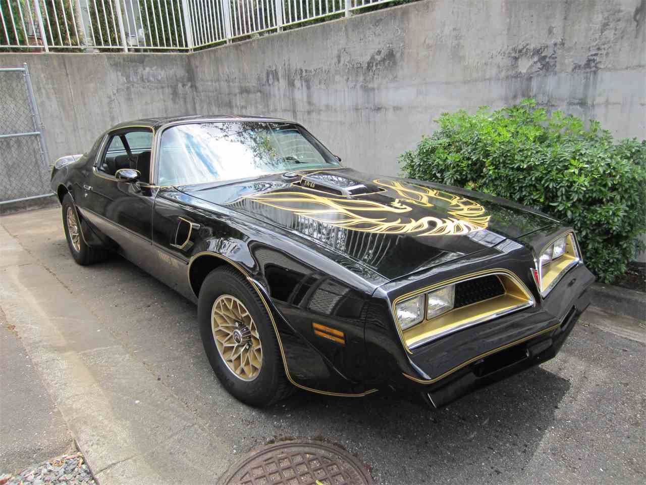1978 pontiac firebird trans am se for sale cc 1017148. Black Bedroom Furniture Sets. Home Design Ideas
