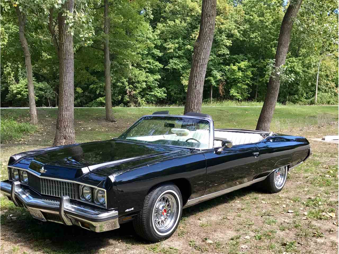 1973 chevrolet caprice for sale cc 1017319. Black Bedroom Furniture Sets. Home Design Ideas