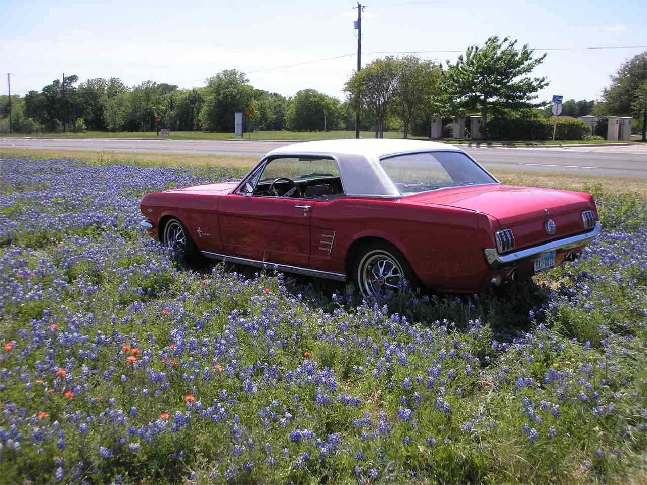 1966 Ford Mustang for Sale - CC-1017763