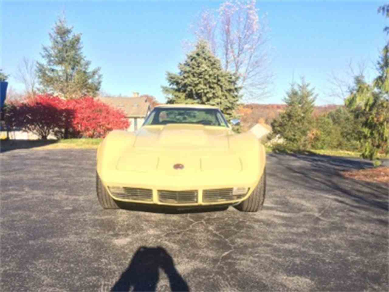 Large Picture of '74 Corvette - LTDC