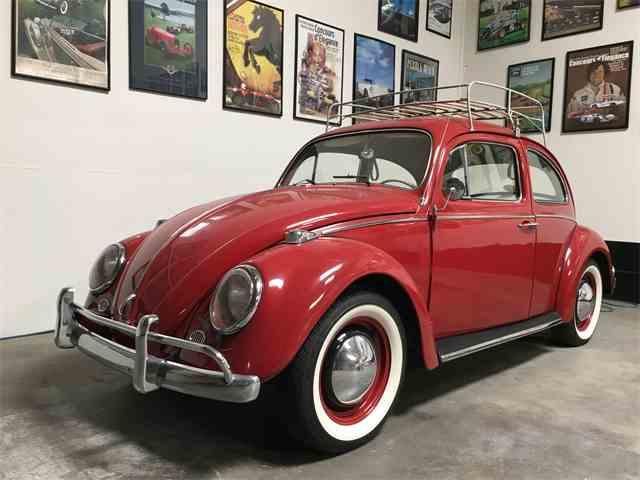 1964 Volkswagen Beetle | 1019882