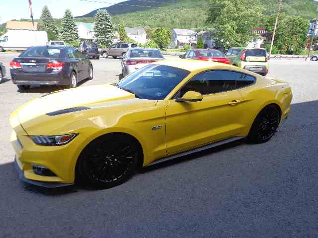 2015 Ford Mustang GT | 1022300