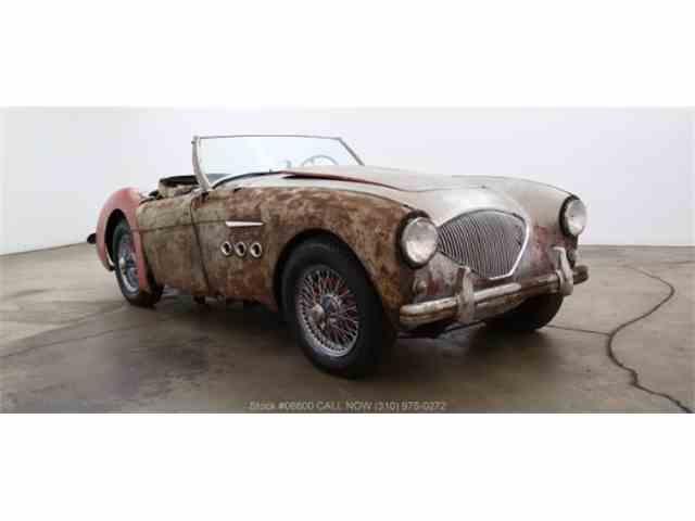 1954 Austin-Healey 100-4 | 1023199