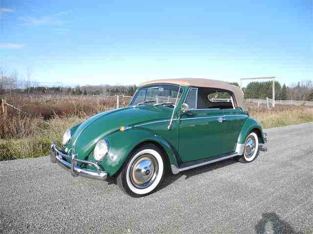 Picture of '65 Beetle - M0NI