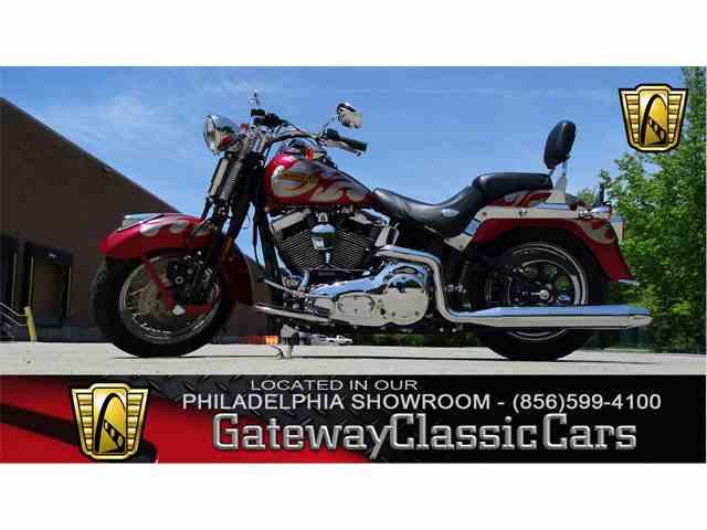 2005 Harley-Davidson FLSTSCI | 1029051