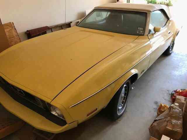 1973 Ford Mustang | 1030353
