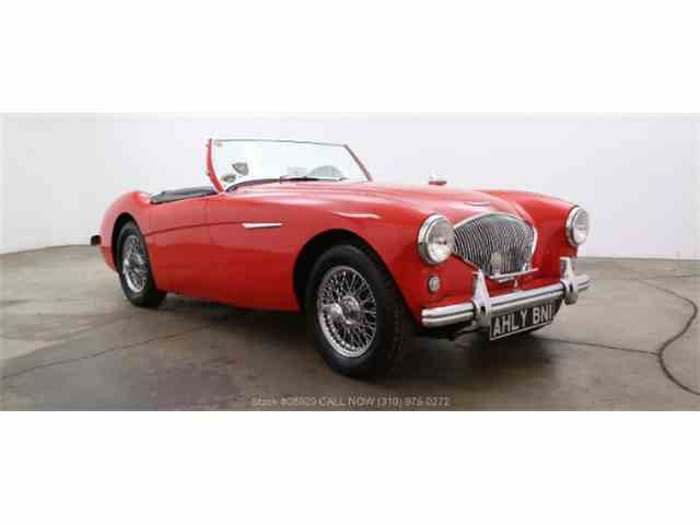 1954 Austin-Healey 100-4 | 1034636