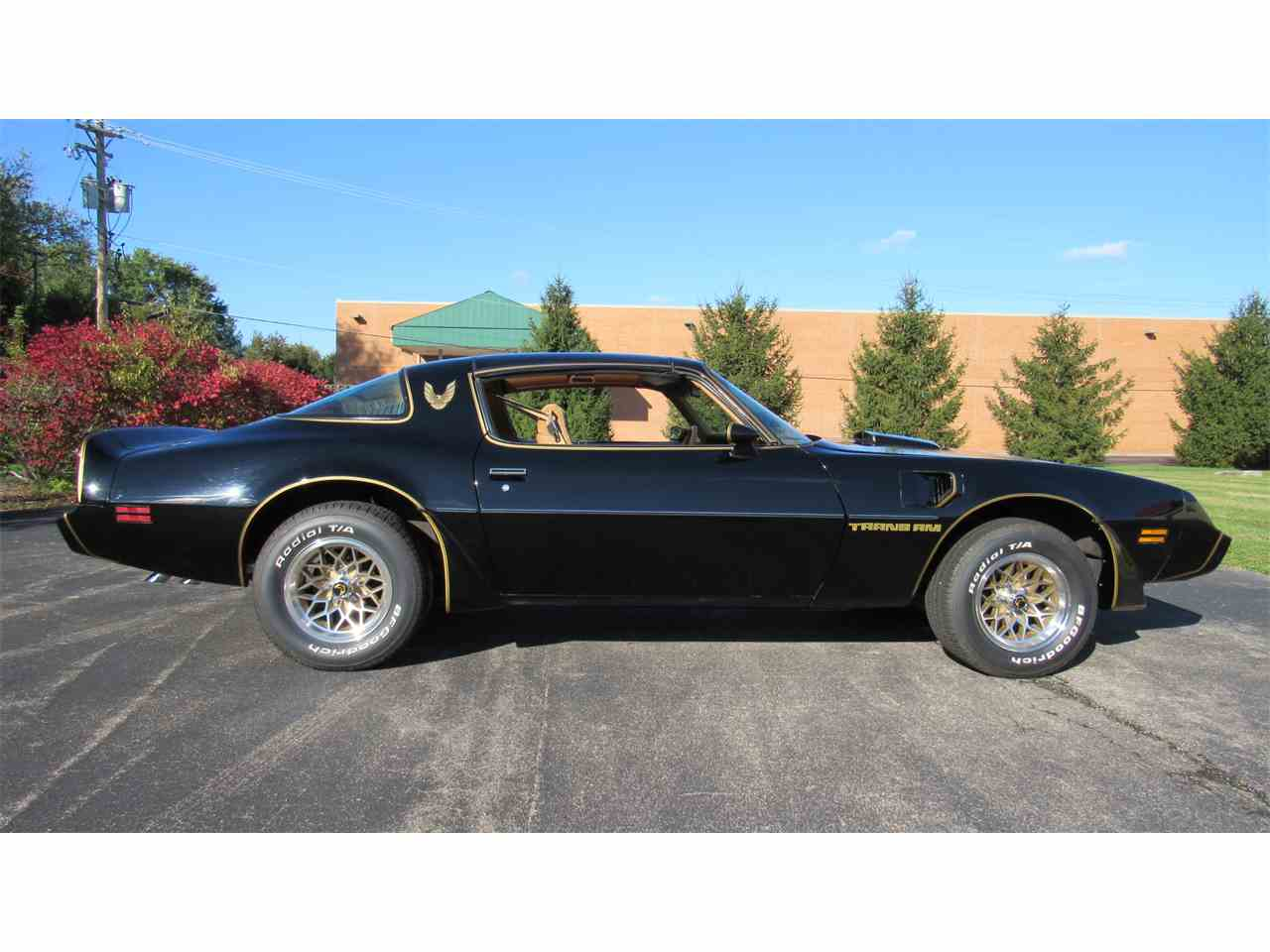 Large Picture of 1979 Pontiac Firebird Trans Am - M8TS