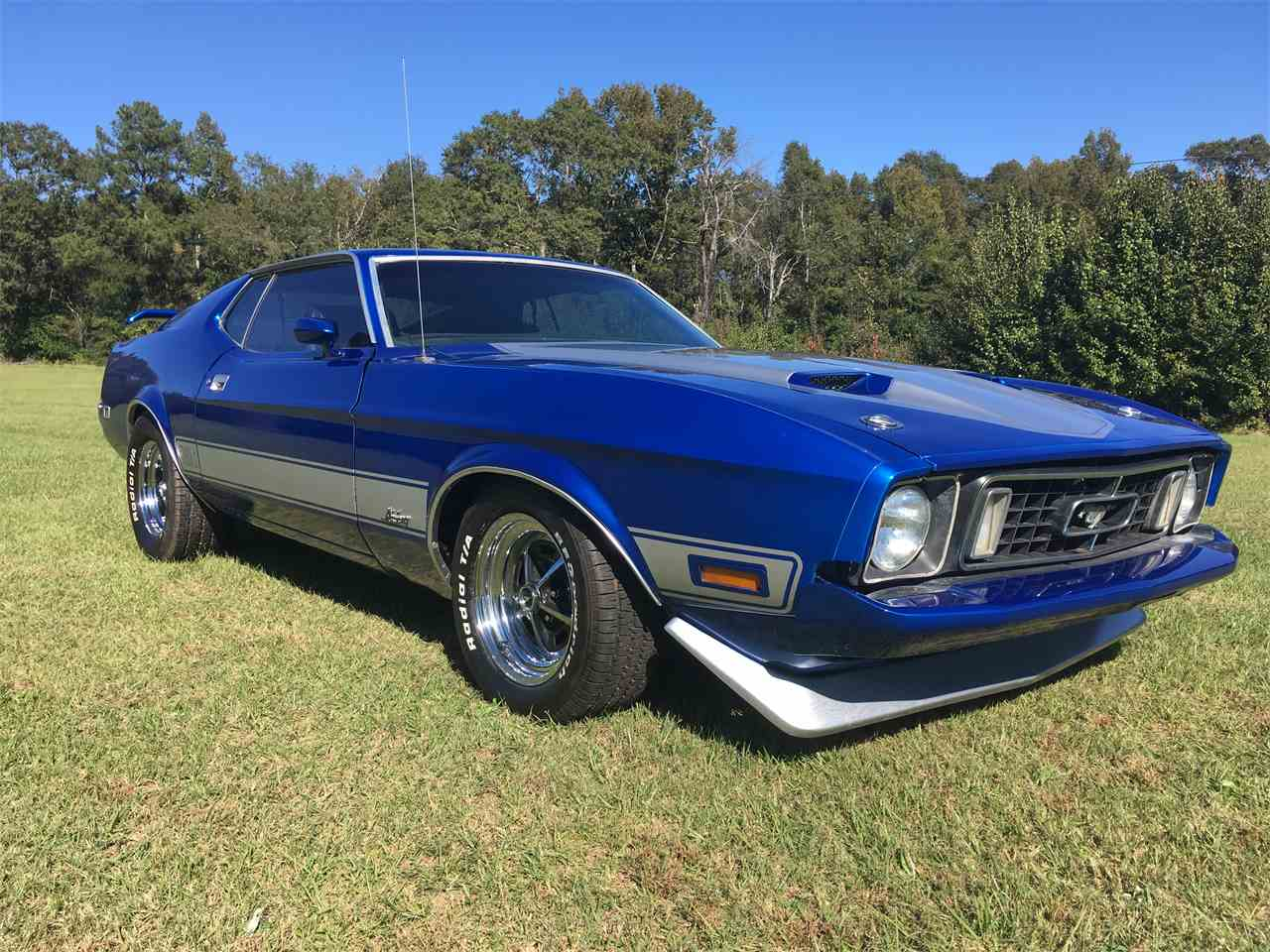 Large Picture of 1973 Ford Mustang Mach 1 located in Phenix City Alabama - M9HX