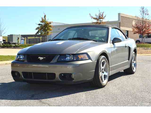 2003 Ford Mustang Cobra | 1042490