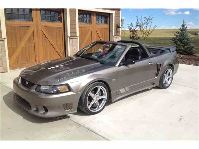 2002 FORD SALEEN | 1049889