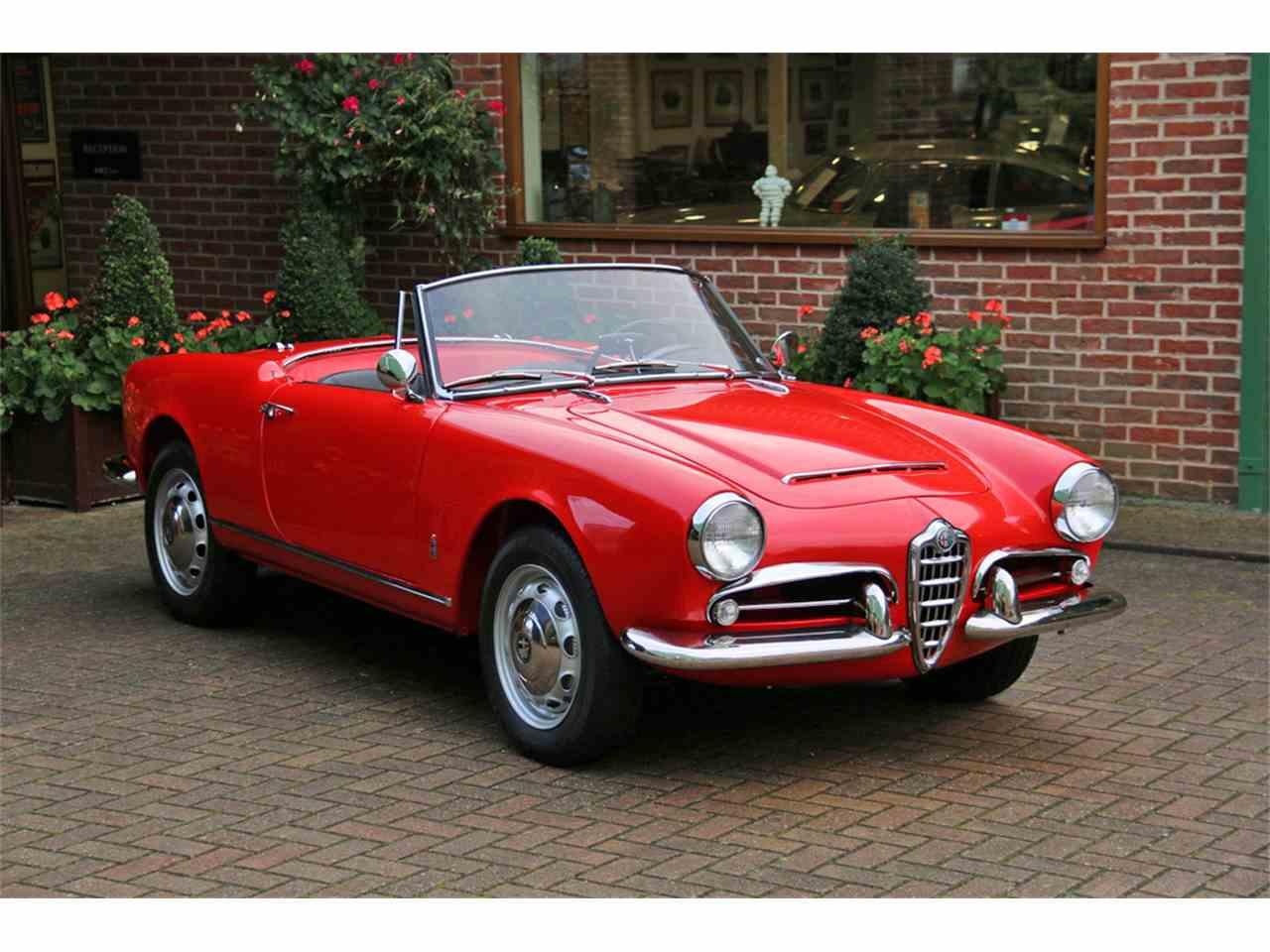 1962 alfa romeo giulia spider for  | classiccars | cc-1050275