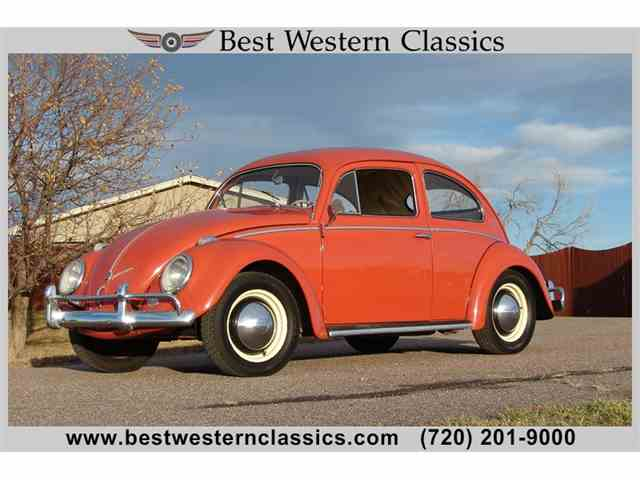 Picture of '56 Beetle - MMIN