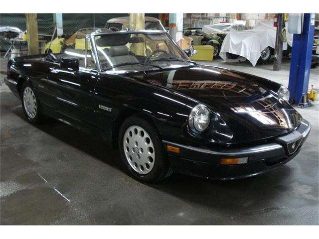 1989 Alfa Romeo Spider | 367238