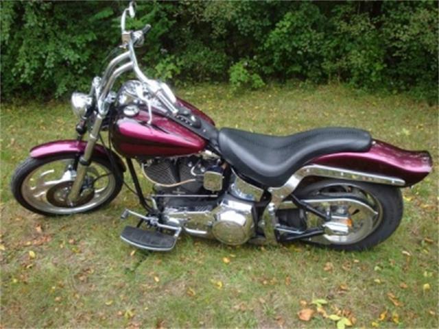2000 Harley Davidson Soft Tail   420019