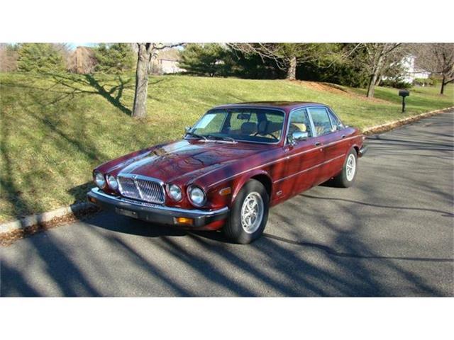 1983 Jaguar XJ6 | 428471