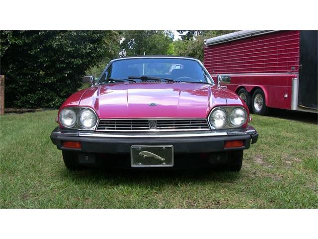 1989 Jaguar XJS | 455255