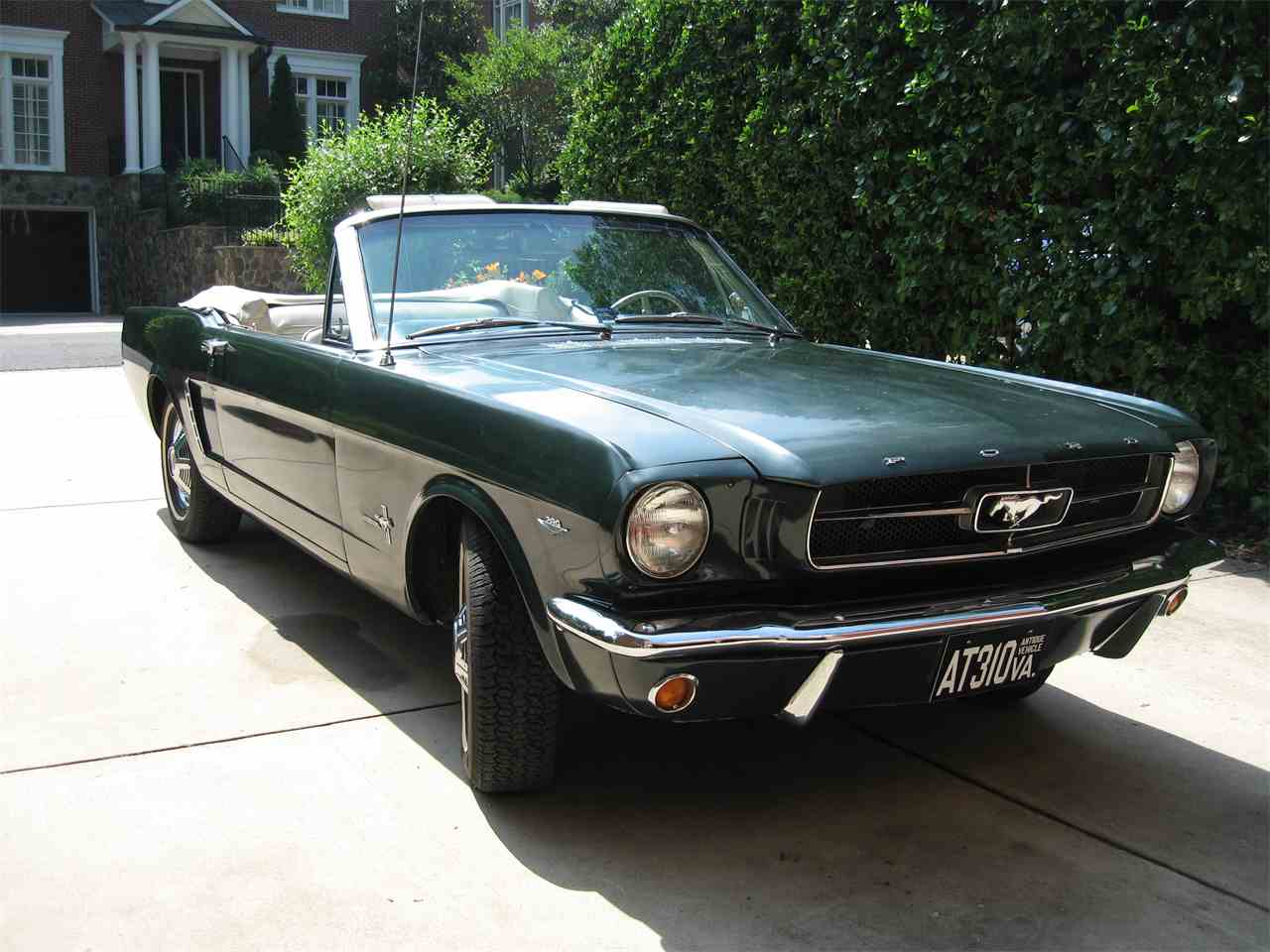 1964 Ford Mustang for Sale - CC-558899