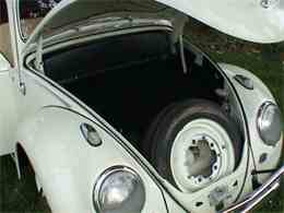 Picture of '63 Beetle - CDES