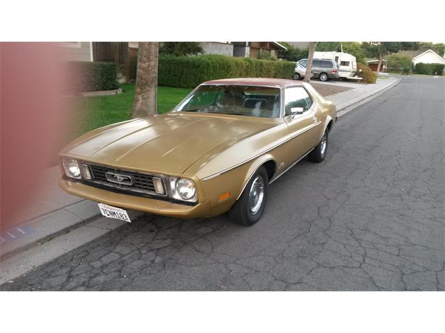 1973 Ford Mustang | 639318