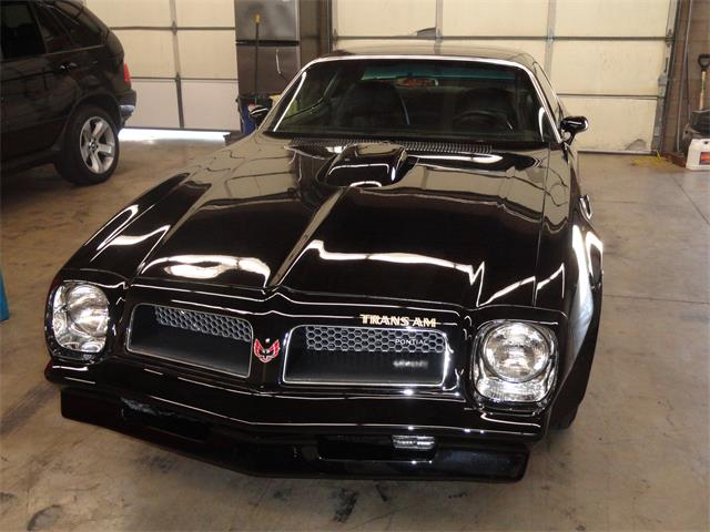 1976 Pontiac Firebird Trans Am | 646421