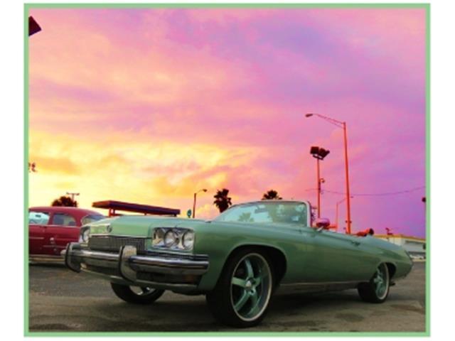 1973 Buick Centurion | 646683