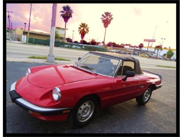 1986 Alfa Romeo Spider | 652427