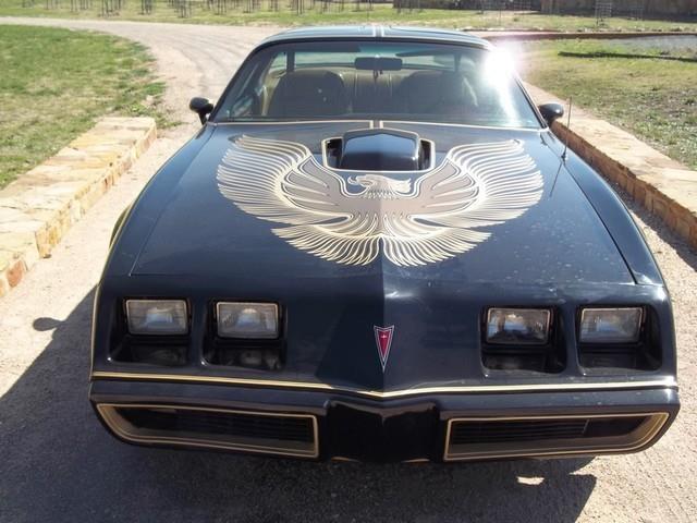 1981 Pontiac Firebird | 691093