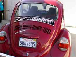 Picture of '73 Beetle - EVUA