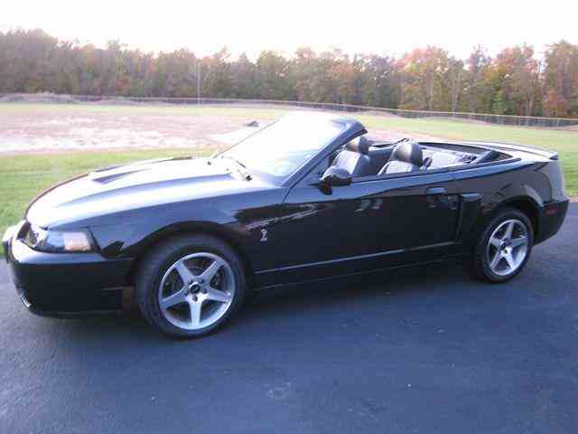 2003 Ford Mustang | 695333