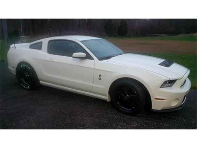 2013 Shelby Mustang | 695341