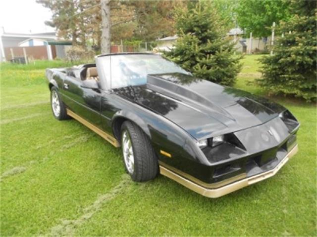 1984 Chevrolet Camaro | 701879