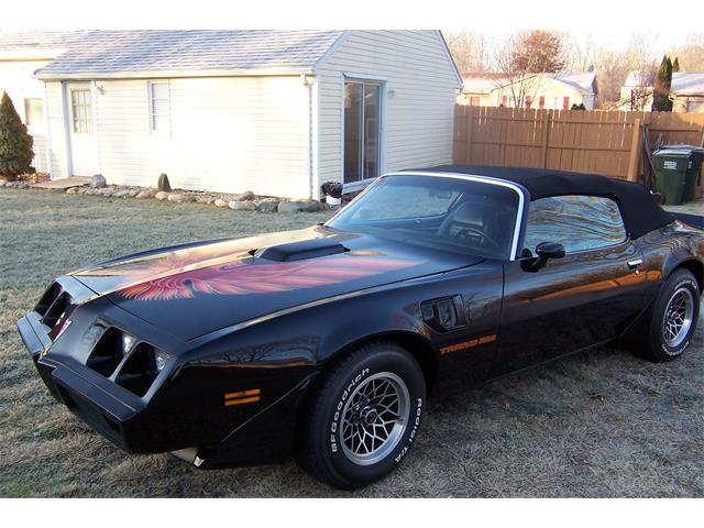 1979 Pontiac Firebird Trans Am | 702846