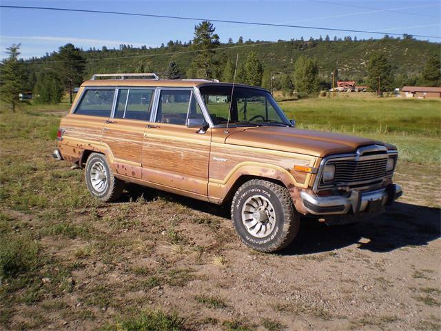 1983 Jeep Grand Wagoneer | 705524