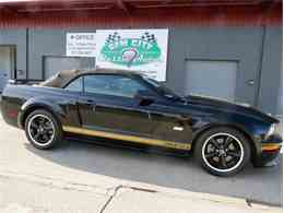 2007 Ford Mustang SHELBY Hertz for Sale - CC-723028