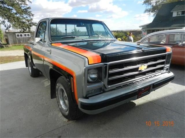 1979 Chevrolet Scottsdale | 732564