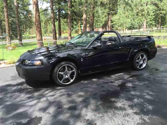 2001 Ford Mustang SVT Cobra | 736945