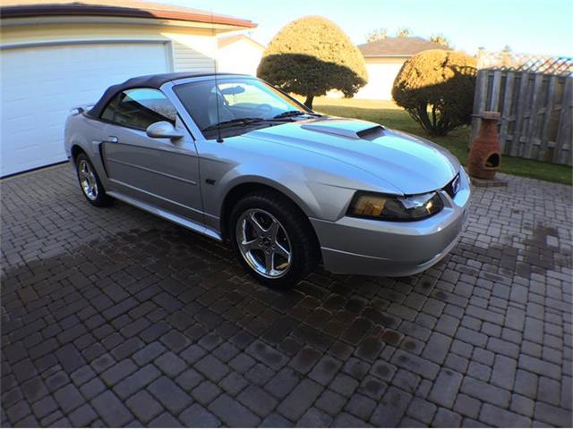 2003 Ford Mustang GT | 751340