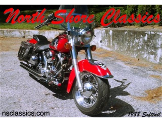 1988 Harley-Davidson FLSTC | 755359