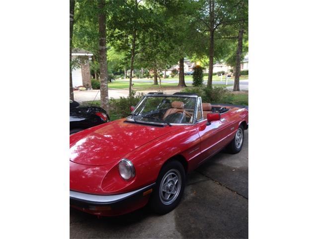 1986 Alfa Romeo 2000 Spider Veloce | 756508